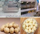 Potato Peeling Machine/Potato washer and peeler