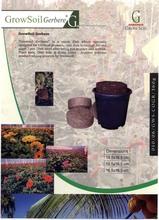 Grow Disk for GERBERA Plant