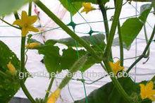 Plant Support Net , Pea&bean Netting