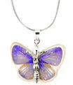 Real azul de la mariposa collares