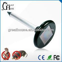Solar cola rato ( GH-316 )