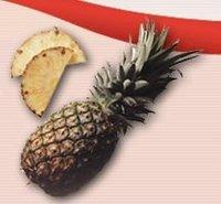 Aseptic Pineapple Puree