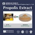 Propóleos 70% flavonoids10% de abeja natural extracto de propóleo