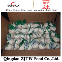 China Garlic Product 4.5cm-6.0cm for Export and Import