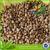 Wholesale Roasted Buckwheat Kernel