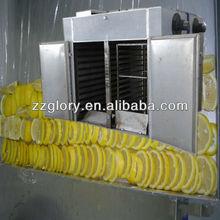 Fruit & Vegetable Garlic & Onion Fruit Dehydrator Machine