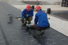SBS/APP Modified bitumen waterproof membrane manufacturer