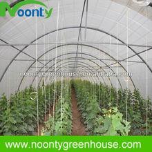 Hoop Growing House