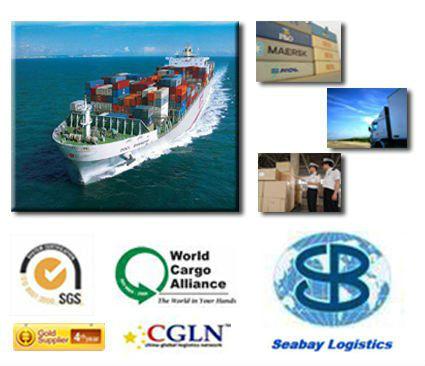 yiwu/qingdao/tianjin Ocean Freight to Port Qasim,Pakistan