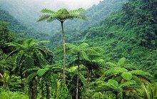 Tourism Development for sale in Fiji