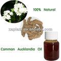 Costus raíz de aceite uesd para antiséptico, antiespasmódico, antivirales, bactericida, carminativo, digestivo, expectorante, febrífugo