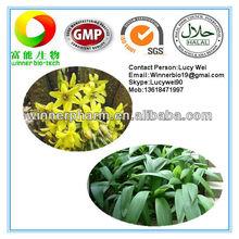 100% Natural Xian Mao Extract/Rhizoma Curculiginis Root P.E.