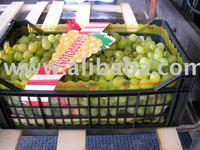 VICTORIA Grapes
