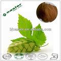 naturel extrait de houblon huile