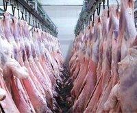 Lamb Carcass