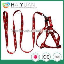 Fashional dog leash and dog collar
