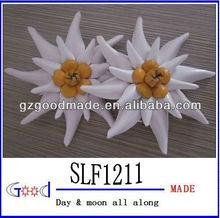 white sharp leaves leather flower daisy flower
