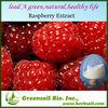 2013 High quality organic raspberry powder