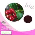 Cranberry ( boldo ) extrato / / Vaccinium myrtillus extraia ( 5% - 25% antocianidinas ) - fornecido pela NutraMax