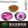 Top Quality Echinacea Extract Powder/Phenolic 4% or other specs