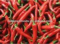 chile dulce rojo