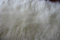 long haired sheep fur/tan sheep plate/fur garment raw material