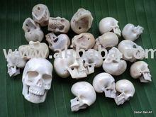 Antler découpant le découpage de crâne