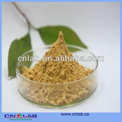 GMP Kosher HALAL Certified Reishi Mushroom Extract Triterpene