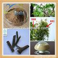 Di alta qualità impianto estratto di gelso estratto di vischio/taxillus chinensis