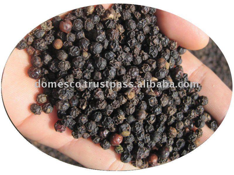 Black Pepper Seed Black Pepper Seeds