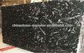 Fósil de granito negro fósiles marruecos