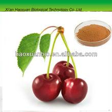 Cherry Polyphenols