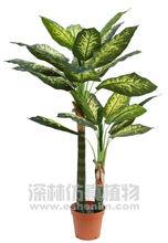 nearly natural artificial evergreen,artificial rare plants