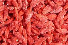 goji berries/wolfberry/import goji berry/LYCIUM BARBARUM