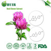 plant estrogen effects Red Clover Extract Trifolium pratense Extract