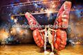 2015 marca nueva etapa el rendimiento de la mariposa inflables disfraces/alas inflables yp-207