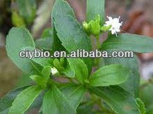 Bulk Pure Stevia Extract,Organic Stevia Powder,Stevia Extract Rebaudioside A Stevioside