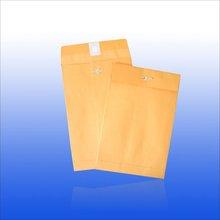 6 x 9'' Clasp Envelope