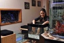 Garra rufa fish SPA sets