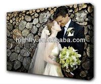 Silk Fabric, canvas oil paintings ,printing silk fabric roll