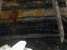 Bitominous Coal