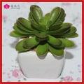 Creamic vaso de suculentas mesa mini-decorativas plantas suculentas