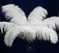 feather supplier wholesale cheap artificial ostrich feathers