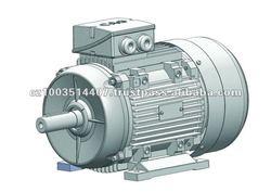 CAG HAD Three Phase Multispeed AC Motor