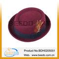 moda 2014 de fieltro de lana de la india sombrero de plumas para la mujer