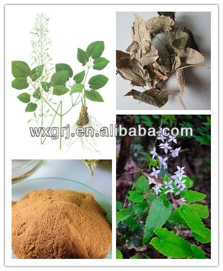 Ex-Stock Herb Medicine Epimedium/Horny Goat Weed Extract Powder Icariin