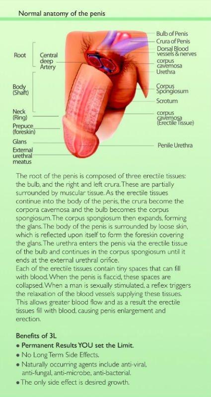 permanent penis enlargement