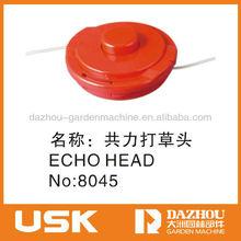 echo head