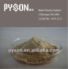 100% Natural Raspberry extract /Fructus Rubi P.E. Raspberry Ketone Powder