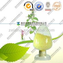 Natural Herba Clinopodii extract Chinse Clinopodium Herb